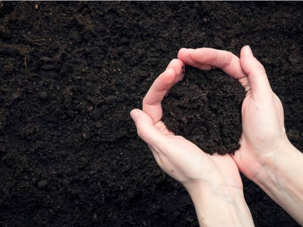 buy topsoil northern kentucky